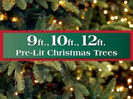 Uncategorized  Uncategorized Costco Xmas Trees Image Ideas 12 Ft Fake Christmas Tree