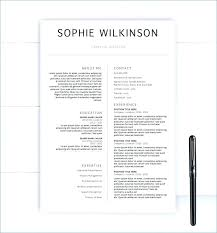 Executive Resume Templates 2015 Ms Word Resume Templates Word Resume Templates Executive Resume Word