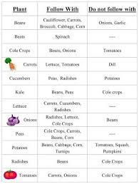 Crop Rotation Chart Vegetable Gardening Vegetable Garden Crop Rotation Chart Container Gardening