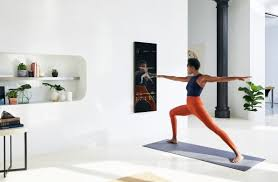 home gym mirrors home gym