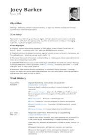 Digital Marketing Consultant | Copywriter Resume samples