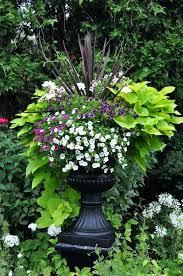 Decorative Garden Urns Black Garden Urn Garden Urn Rental Black Black Urn Planter Ideas 72