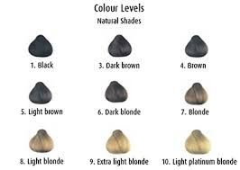 Hair Colour Level Chart Hair Colouring Understanding Colour Levels Beauty Tips