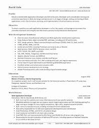 ... Java Developer Resume Sample Fresh Web Developer Resume Examples ...