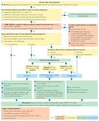Urine Culture Flow Chart Diagram Nationalphlebotomycollege
