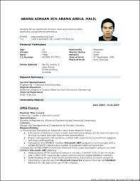 Curriculum Vitae Examples Download Free Simple Professional Resume Template In Format