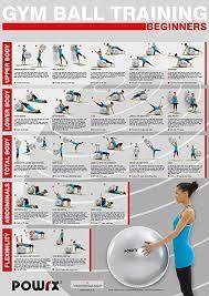 Amazon Com Powrx Exercise Ball Chart Beginner Level Gym
