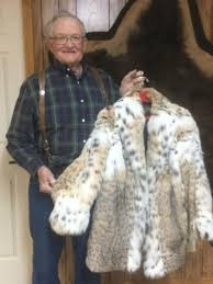 trapper tom krause shows off the bobcat belly fur coat he had made for his wife he guesses it s probably worth about 7 000