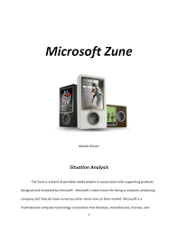 Teen sells zune web site