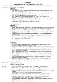 team leader cv examples team leader resume samples velvet jobs