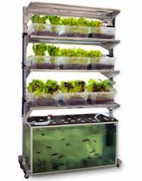 aquaponic gardening. tower garden aquaponic gardening