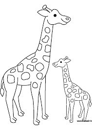 Dessin De Girafe A Imprimer Gratuitllllllllllll