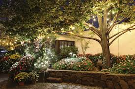 garden lighting ideas. if you have a tree or two in your garden can hang strings of lighting ideas n