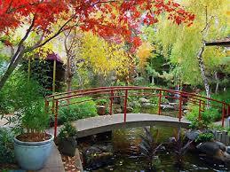 dinah garden hotel. The Sea By Alexander\u0027s Steakhouse At Dinah\u0027s Garden Hotel - Palo Alto, California #1 Dinah