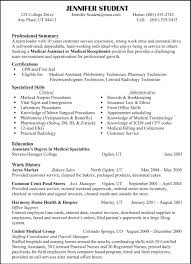 Example Of Resume Template Examples Of Resumes