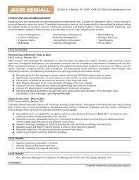 B2b Sales Resumes B2b Software Sales Resume Model Samples Furniture Examples Search