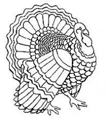 Small Picture The 25 best Turkey coloring pages ideas on Pinterest Turkey
