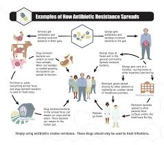 antibiotic resistance narms cdc how antibiotic resistance spreads