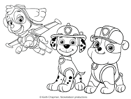 Coloring Pages Paw Patrol Coloring Pages Skye And Rubble Page