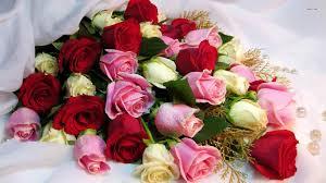 bobby flower bundle roses image