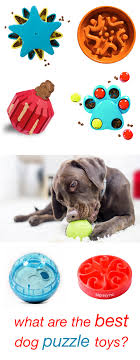 anxiety toys for dogs. Interesting Toys The Best Dog Puzzle Toys  Top Choices For Active Intelligent And Bored  Pups Intended Anxiety For Dogs