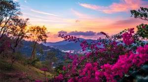 Картинки по запросу краски природы