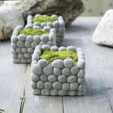 <b>concrete planter</b> DIY