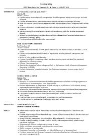 Risk Auditor Resume Samples Velvet Jobs