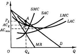 Реферат Поведение фирмы в условиях монополии Рис 6 Оптимум монополии в длительном периоде