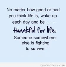 Being Thankful Quotes Magnificent 48 Be Thankful Quotes 48 QuotePrism
