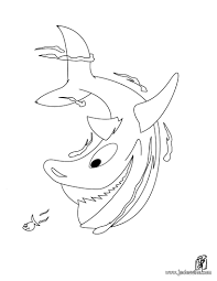 Animaux Requin A Imprimer Requin A Imprimer Photo De Requin A