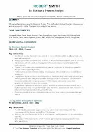 Professional Business Resume Template Excel Business Systems