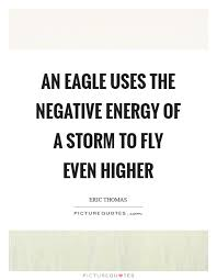 Negative Energy Quotes Custom An Eagle Uses The Negative Energy Of A Storm To Fly Even Higher
