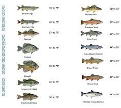 Fishing Activity Chart How Water Temperature And Oxygen Affect Fishing Mepps Tactics
