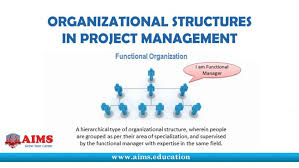 Project Management Organization Structure Chart Nfmoshu Com The 4