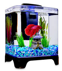 petco fish tanks.  Tanks And Petco Fish Tanks L