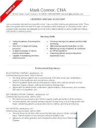 Profile Section Of A Resume Formidable Resume Sample For Skills