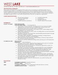Professional Resume Writing Service Awesome Carolina Custom Resumes Professional Resume Writing Service Resume