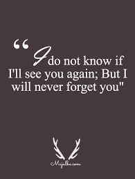 Forget Love Quotes Impressive I'll Never Forget Love Quotes For Quotes Lover Pinterest
