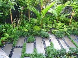 Small Picture 20 best Sub tropical gardens images on Pinterest Tropical