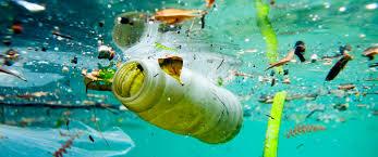 Resultado de imagem para desafio ambiental
