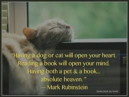 Image result for cat dog reading book