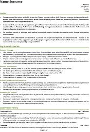 ceo resume letter example executive or ceo careerperfect resume 64 career  perfect resume reviews
