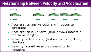 Animal Speed Comparison Chart Differences Between Velocity And Acceleration Comparison