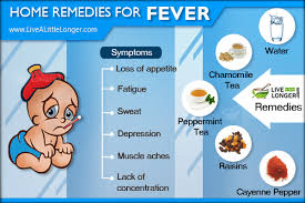 Home, remedies for, fever