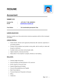 Accountant Resume Format In Word Format In India Camelotarticles