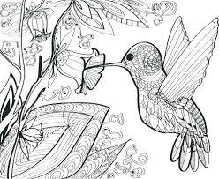 bird coloring book with coloring book bird hummingbird coloring book angry birds coloring book bird
