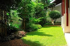 Small Picture House of Green Completed Gardens dumind 1 39 Garden Designing