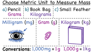 How Do You Determine The Best Metric Units To Measure A Mass
