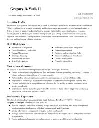 Quality Resume Examples Director Of Quality Resume Examples Best Of Creating An Excellent 12